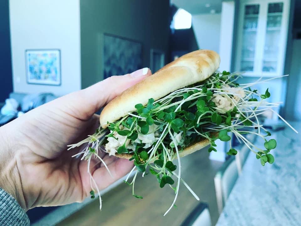 microgreens tuna salad sandwich