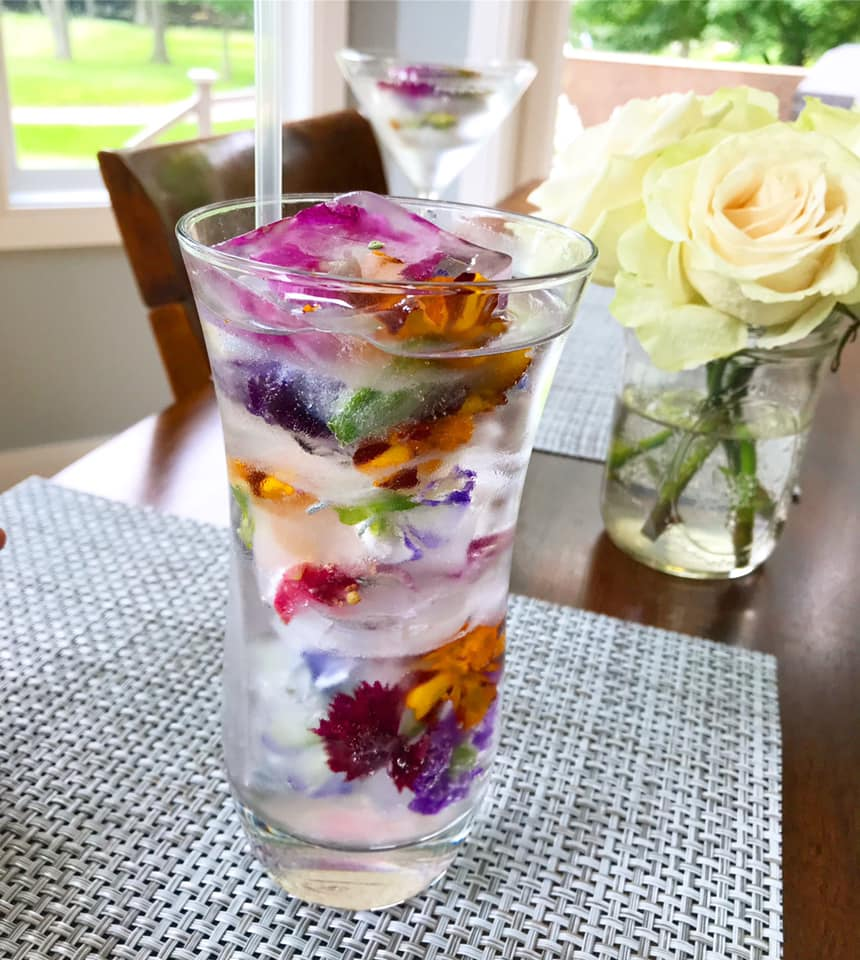 Picture of Edible Flower Ice Cubes in a glass of water