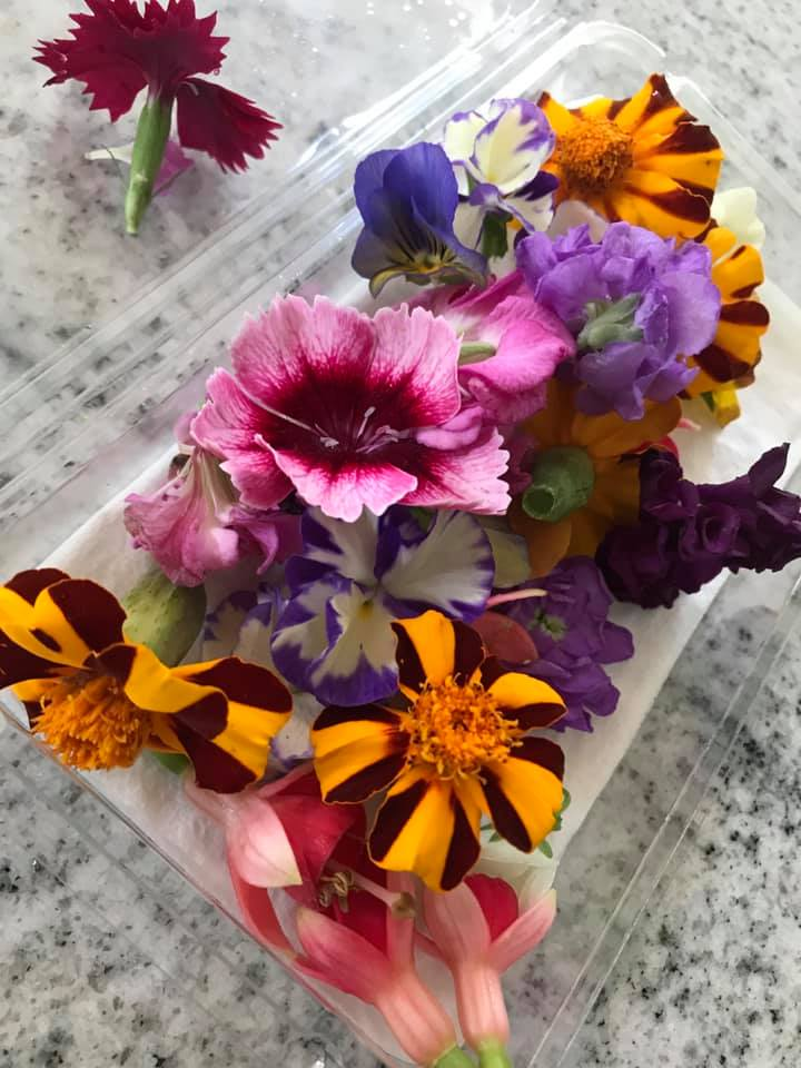 pack of edible flower ice cubes