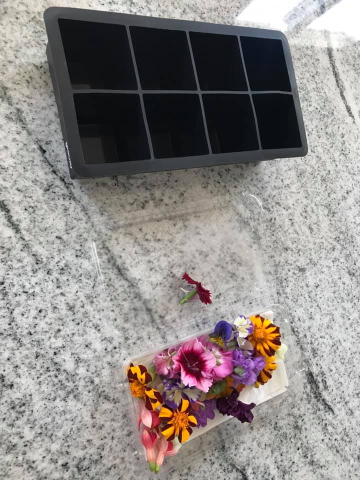 edible flowers and silicone ice cube tray