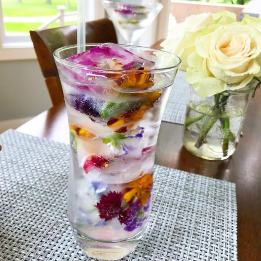 edible flower ice cube photo followed by link to recipe