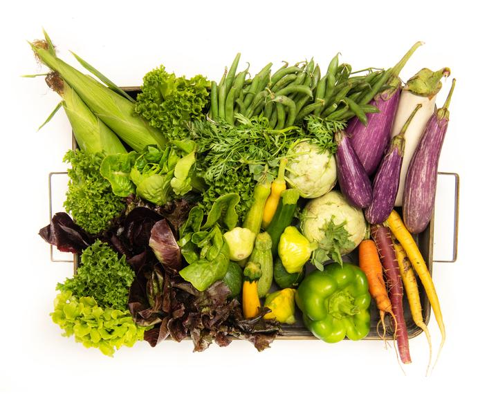 Chef's Garden Home Vegetable Delivery Kit